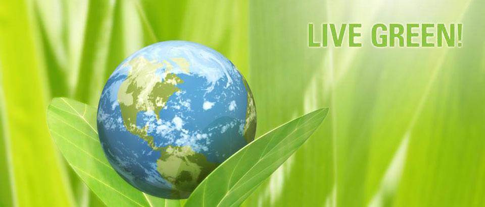 live-green-1.jpg