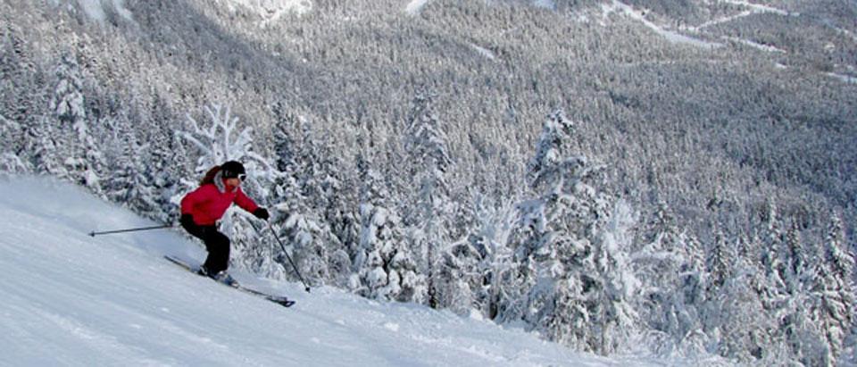 ski-nh-1.jpg